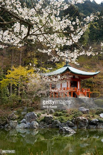 Bentendo temple and Cherry blossoms