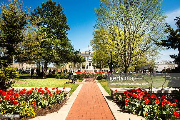 bentonville square in spring with flowers - bentonville stock photos and pictures