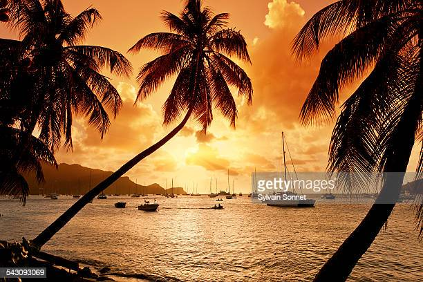 bequia island, port elizabeth - saint vincent and the grenadines stock pictures, royalty-free photos & images