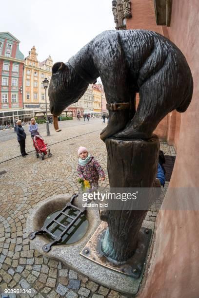 Ber Breslauer Bär am Rathaus in Wroclaw