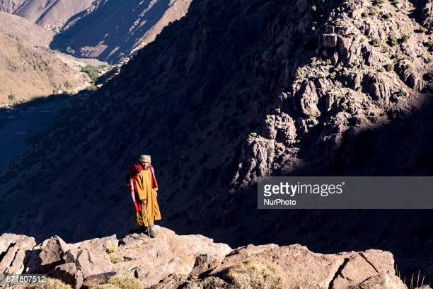 Berber herdsman takes a flock of goats high up to about 3000 meters above the sea level in Atlas mountains Morocco on October 20 2017 Berber...