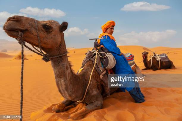 berber man at sunset in the desert of merzouga, morocco - bedouin stock pictures, royalty-free photos & images