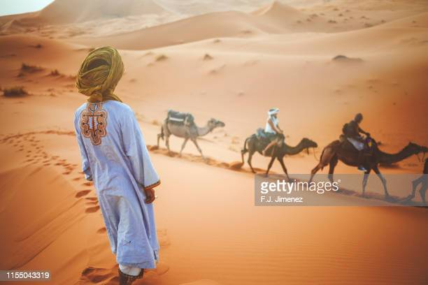 berber man watching a camel caravan in the desert of merzouga - bedouin stock pictures, royalty-free photos & images