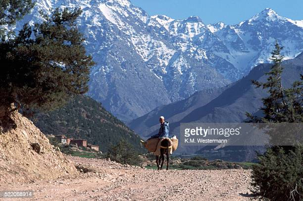 Berber Rides Through Toubkal Mountains