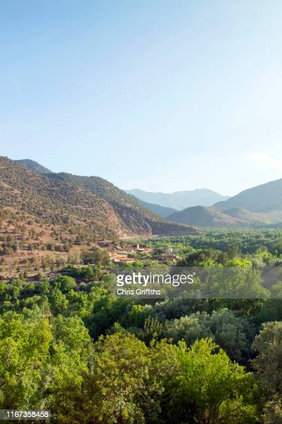 berber village view from tinmal mosque, morocco - amazigh photos et images de collection
