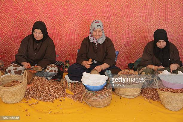 Berber women open argan nuts with rocks to get to the kernels for making argan oil at the argan oil cooperative in Morocco Africa on 17 December 2016...