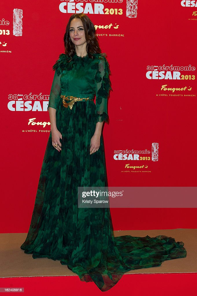 Berenice Bejo attends the Cesar Film Awards 2013 at Le Fouquet's on February 22, 2013 in Paris, France.