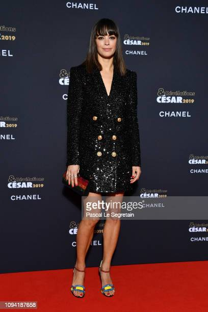 Berenice Bejo attends the 'Cesar Revelations 2019' at Le Petit Palais on January 14 2019 in Paris France