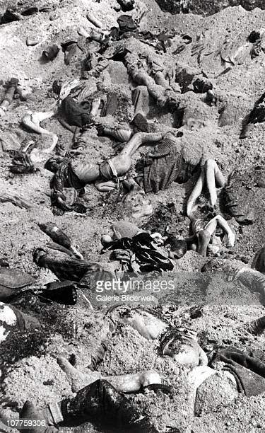 Bergen-Belsen Concentration Camp, A mass grave dug after the camp has been turned over to the Allied 21st Army Group. 16th April 1945. 55,000 inmates...
