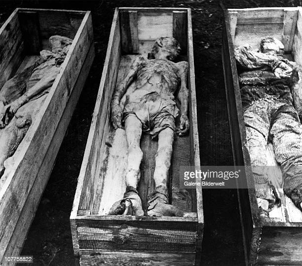 BergenBelsen Concentration Camp Corpses of inmates in coffins after the camp has been turned over to the Allied 21st Army Group 15th April 1945 55000...