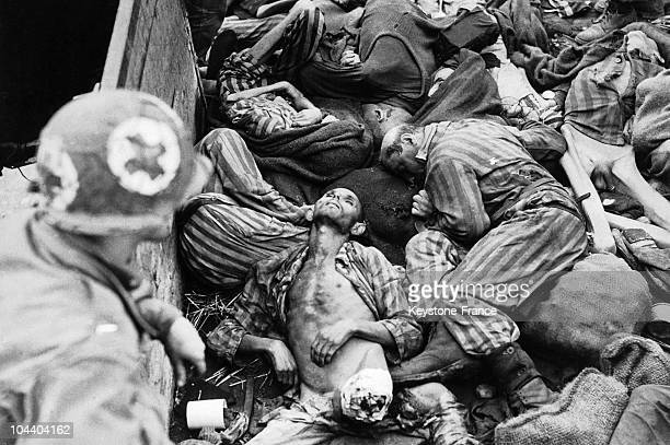 BergenBelsen death camp near Hanover Germany an American army health services soldier discovers a pit of human bodies exterminated just before the...
