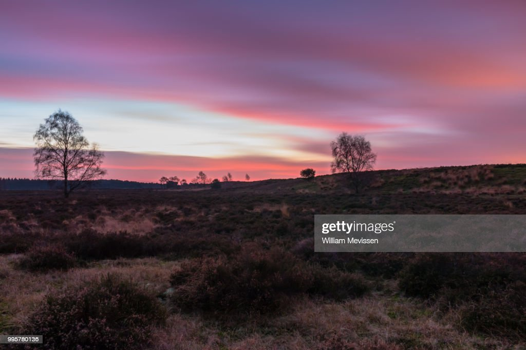 Bergerheide Twilight : Stockfoto