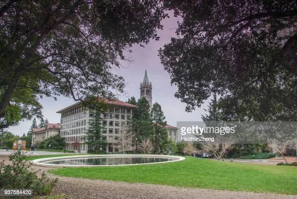 uc berkeley, california - bell tower tower stock pictures, royalty-free photos & images