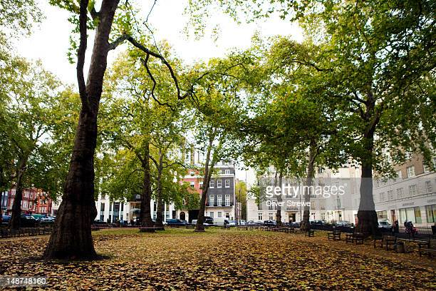 Berkeley Square, Mayfair.