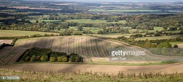 berkshire downs - berkshire downs stock pictures, royalty-free photos & images