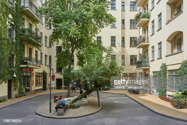 30 Hochwertige Hinterhof Stadt Bilder Und Fotos Getty Images