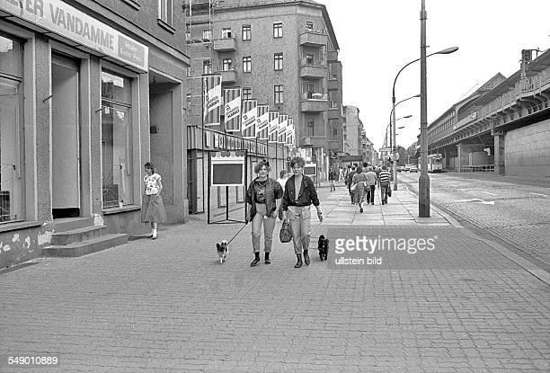 punk girls with dogs in the Schönhauser Allee