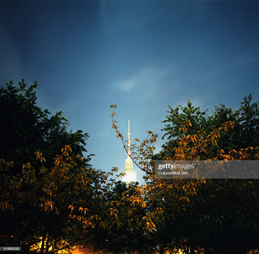 Berlin television tower and trees, Berlin, Germany : Stock-Foto