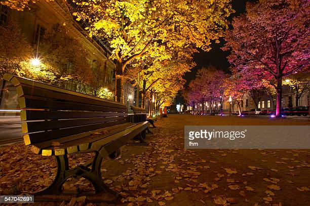 berlin, unter den linden with illuminated trees - boulevard stock pictures, royalty-free photos & images