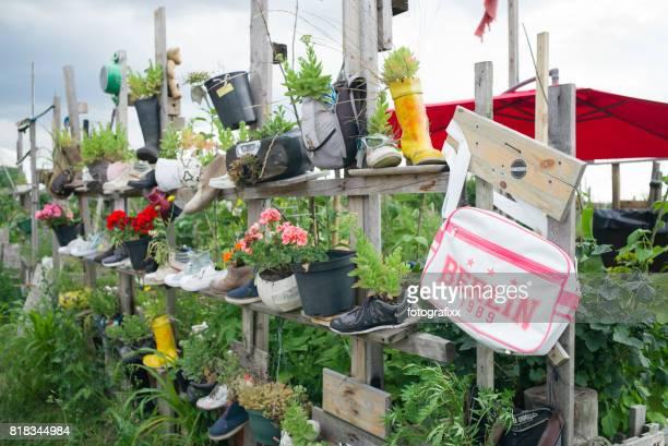 Berlin: Urban Gardening Projekt, Raise Rüben