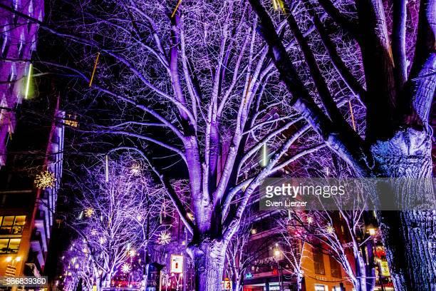 Berlinale Trees