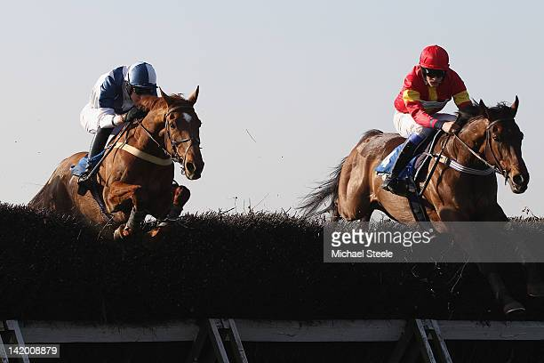 Bermuda Boy ridden by RJarrett clears the open ditch alongside Fairwood Present ridden by SAllwood during the Bitterley Point to Point Hunter'...