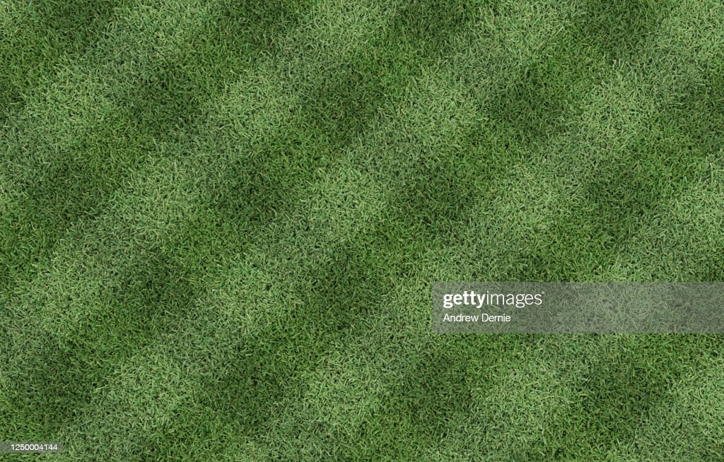 Bermuda Grass viewed from above with a striped just cut pattern 3D Render : Stock Photo