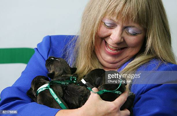Bernann Mckinney a pet owner holds her pit bull terrier cloned dogs at the Seoul National University on August 5 2008 in Seoul South Korea The Seoul...