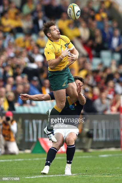 Bernard Foley of the Wallabies is tackled by Lee Jones of Scotland during the International Test match between the Australian Wallabies and Scotland...