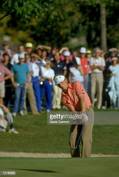 Bernhard Langer of Germany chips the ball onto the green during the Ryder Cup at Muirfield Village in Ohio, USA. Europe won the event with a score of...