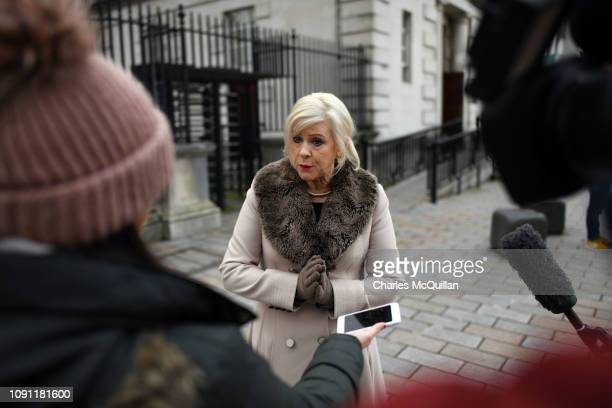 Bernie Smyth founder of pro life group Precious Life talks to the media after holding a protest outside the High Court on January 30 2019 in Belfast...