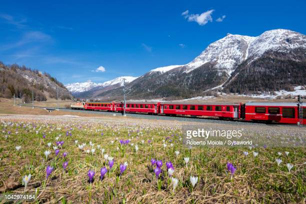 Bernina Express train, La Punt-Chamues-ch