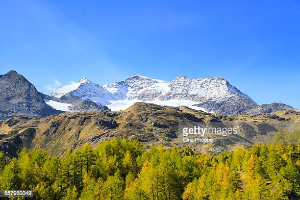 Bernina Pass view