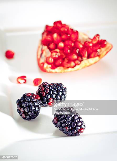 berries and pomegranate - vanessa van ryzin 個照片及圖片檔