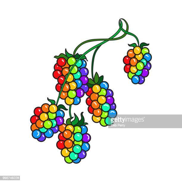 Berries on the stem illustration