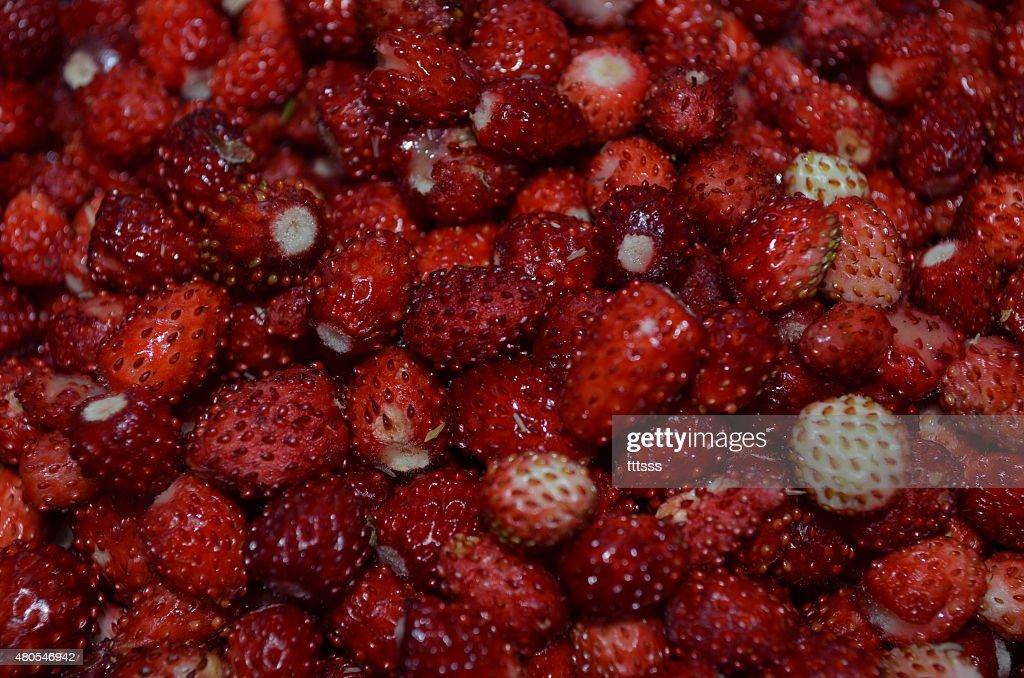 Berries : Stock Photo