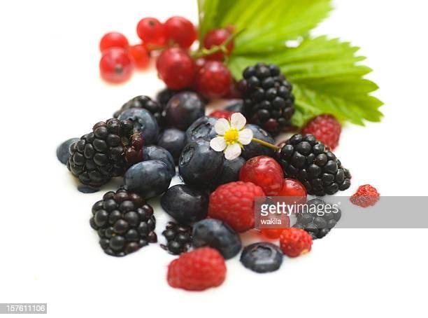 berry fruits in yoghurt