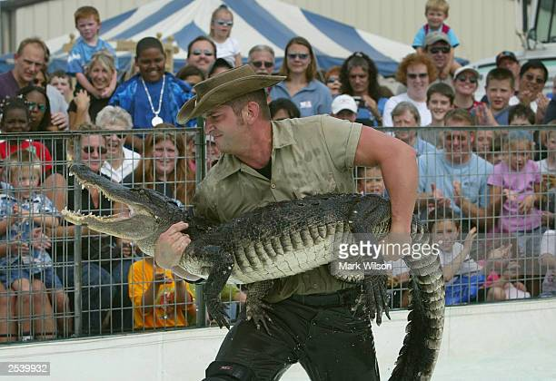 Alligator wrestling stock photos and pictures getty images for Frederick county fairgrounds christmas craft show