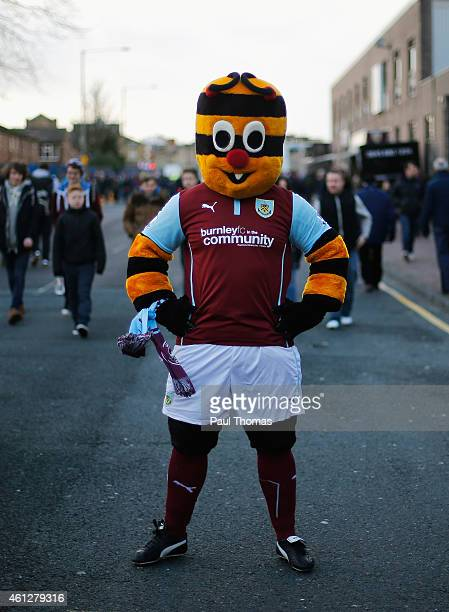 Bertie Bee the Burnley mascot poses prior to the Barclays Premier League match between Burnley and Queens Park Rangers at Turf Moor on January 10...