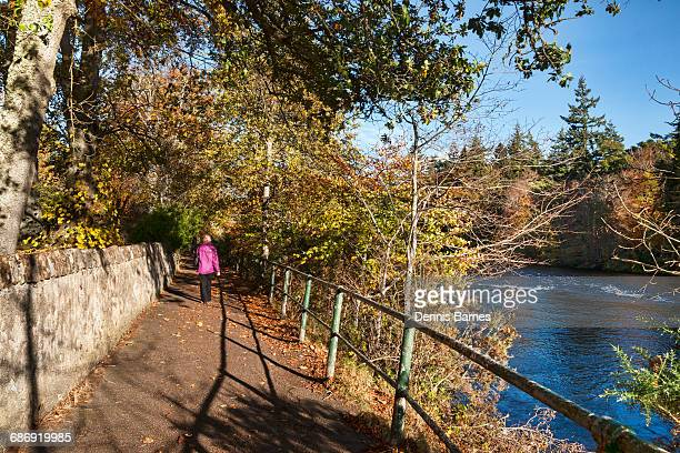 beside river ness, inverness, autumn - inverness stock photos and pictures