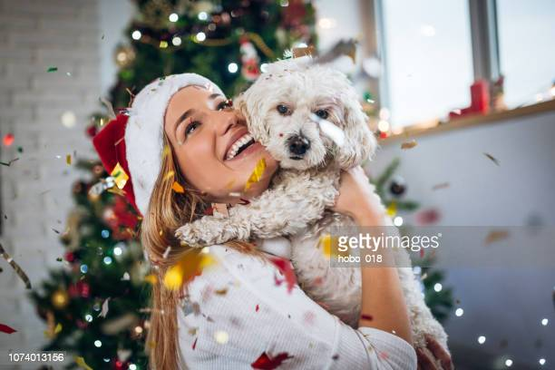 best christmas present ever - christmas dog stock pictures, royalty-free photos & images