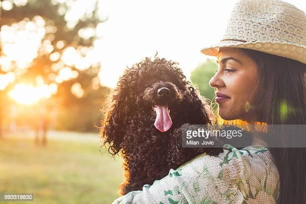 melhor amigo - poodle - fotografias e filmes do acervo