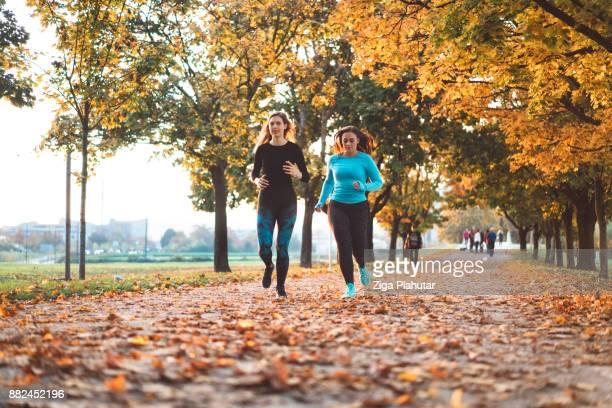 beste vrienden joggen in het park vol herfstbladeren - public park stockfoto's en -beelden