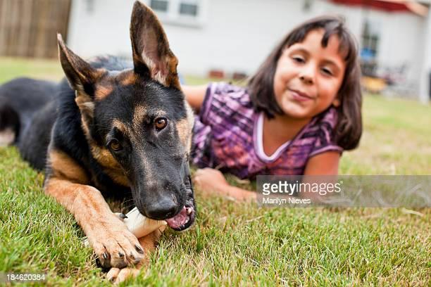 best amigos - cão pastor alemão - fotografias e filmes do acervo