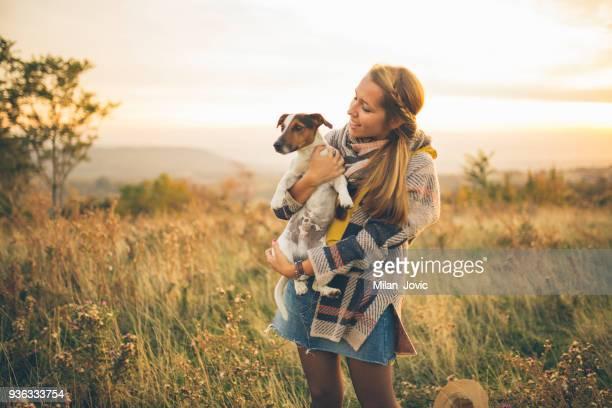 best amigos  - jack russell terrier - fotografias e filmes do acervo