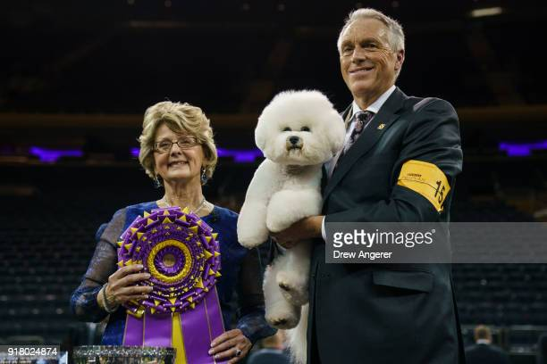 Best in Show winner Flynn a Bichon Frise poses for photos with handler Bill McFadden and judge BettyAnne Stenmark at the conclusion of the 142nd...