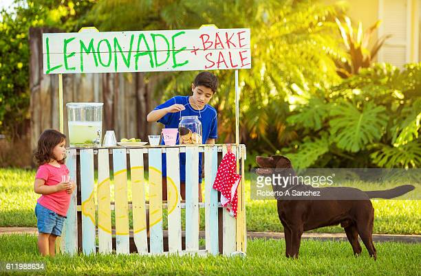 Best lemonade and cookies in town