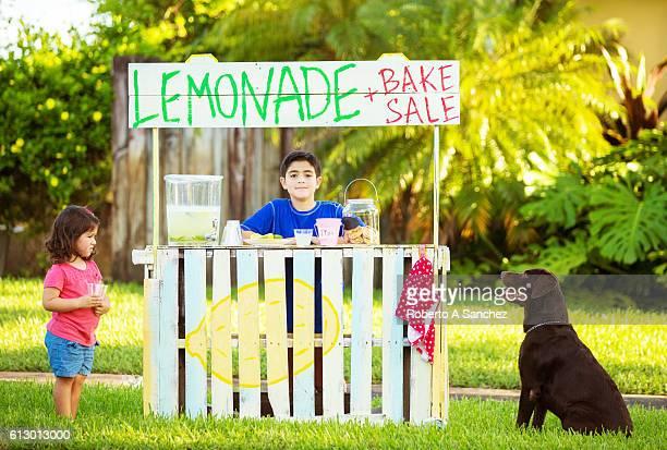 Best lemonade and cookies in town