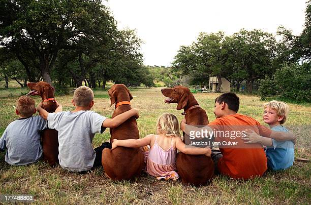 Best of friends children and dogs