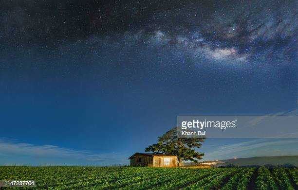 best of milky way - nature magazine stock pictures, royalty-free photos & images